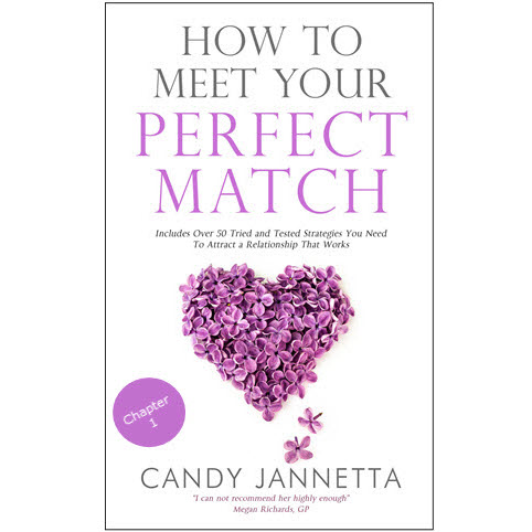 Chapter 1 of How To Meet Your Perfect Match