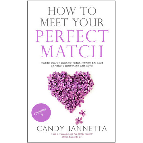 Chapter 5 of How To Meet Your Perfect Match